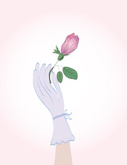 Woman' hand in glove holding rosebud