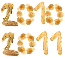2010-2011 farinoso