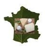 Fromages de France