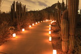 mountain path with luminarias