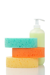 Soap dispenser and sponges