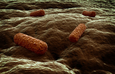 Microbes attacking a tissue