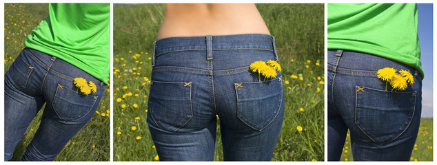 dandelions in back pocket, collage