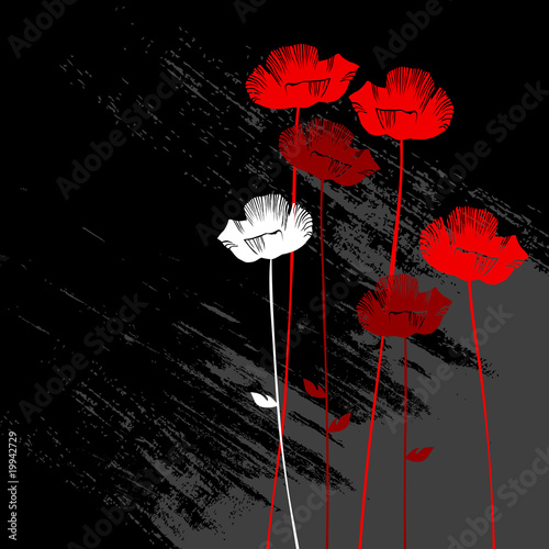 floral background, poppy with a space for your text