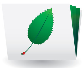 Catalog with green leaf and ladybird on top, vector
