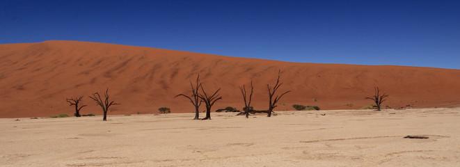 Sossuvlei (désert du Namib)
