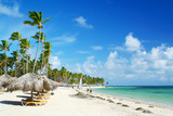 Fototapety Caribbean resort beach with palm trees and sunshades