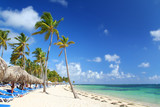 Resort beach fringed with palm trees, sunshades and beach chairs poster