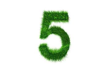 Grüne Nummer 5
