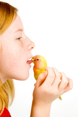love bird is cleaning tongue of little girl