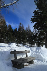 Woods Sitting