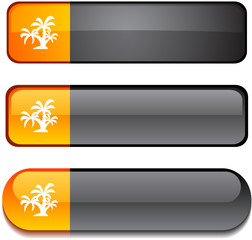 tropical   web buttons. Vector illustration.