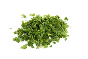 beautiful green edible borecole isolated over white