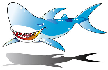 shark サメ 鮫