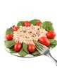 Tuna fish and spinach salad
