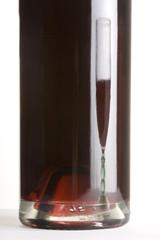 Oenologie - bouteille de vin rouge