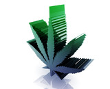 Marijuana cannabis leaf poster