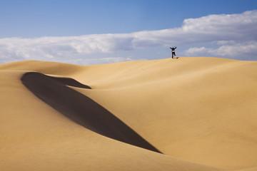 Hombre de Negociuos en el Desierto