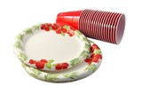 paper plates and plastic cups for picnic