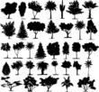 Beautiful Transparent Trees Vectors. 35 Plants
