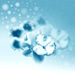 Beautiful blue flowers and snowflakes