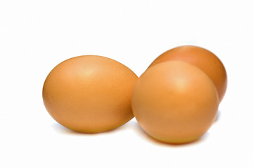 eggs isolated on white