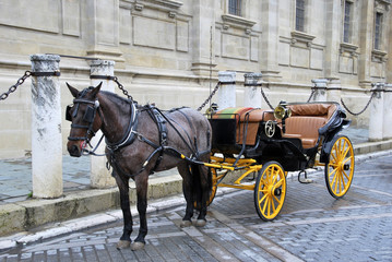 Horse carriage 3
