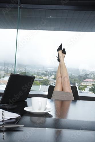 Woman legs concept