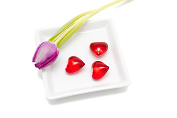 purple tulip and red hearts isolated on white