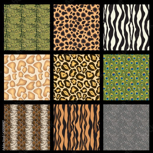 Animal Skins (fur giraffe zebra crocodile snake turtle leopard)
