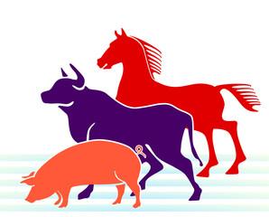 Schwein, Kuh, Pferd