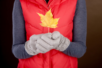 A woman holding an autumn leaf