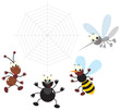 Ant, bee, spider and mosquito