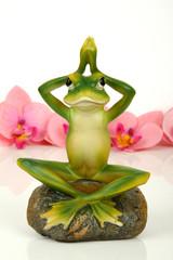 Künstlicher Frosch beim Yoga