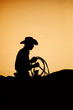 cowboy rodeo sunset silhouette