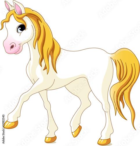 Poster Pony White horse