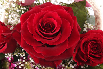 Bouquet with red roses.