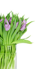 Bouquet of tulips in the vase