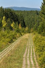 Alter Grenzweg
