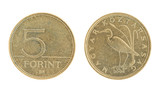 5 Forint - hungarian money poster