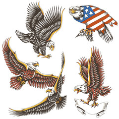 vector illustration tattoo (Eagle - graphic)