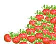 świeże truskawki na deser