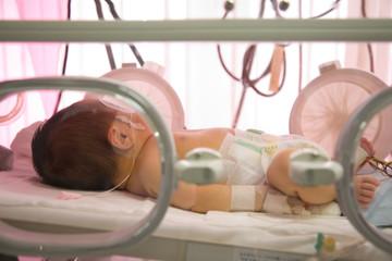 保育器の中の新生児