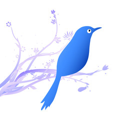 blue bird on flower branch vector