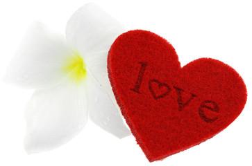 "coeur rouge ""love"" Saint-Valentin, fleur blanche fond blanc"