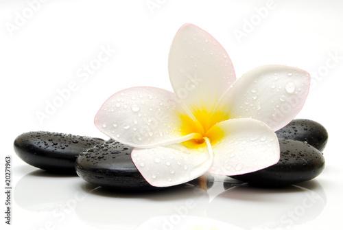 Leinwandbilder,zen,steine,gelb,schwarz