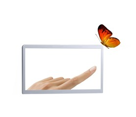 Frame with finger touching butterfly