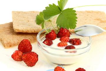 Crispbread and wild berries.