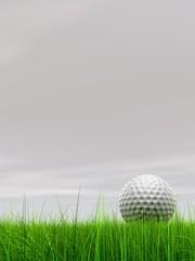 High resolution 3d white golf ball in green grass background