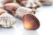 Chocolate Seashells border.Isolated on white